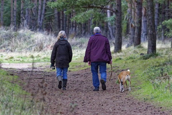 Help Prevent Dementia With a brisk walk