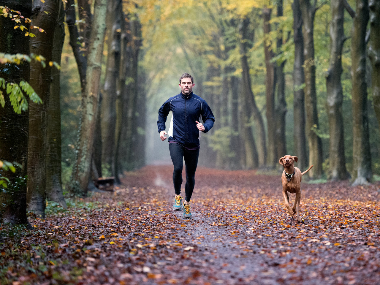 Exercising pretty hard for 30 minutes a day is the 'prescription for life,' doctors say